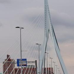 Rotterdam 50.