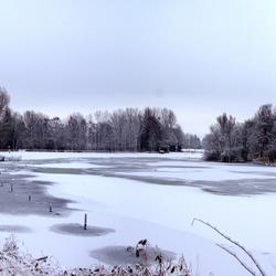 Sneeuw voor Ruud 2