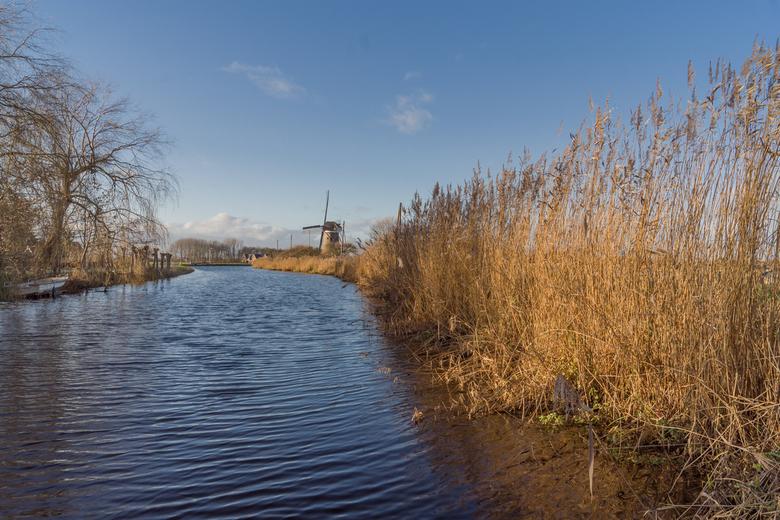 Boezemmolen No. 6, Haastrecht - Op een mooie heldere winterse dag, deze foto gemaakt. Tussen het riet door zicht op de Boezemmolen No. 6 in Haastrecht