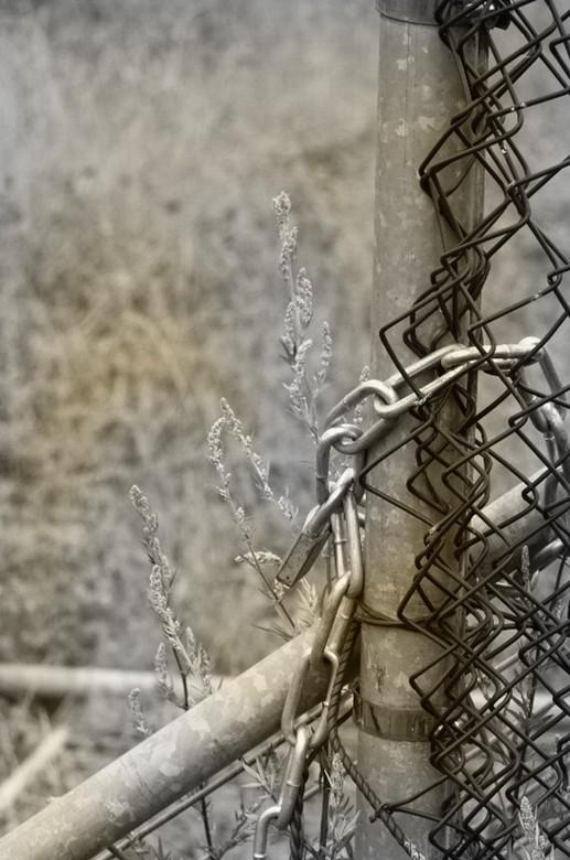 chain -
