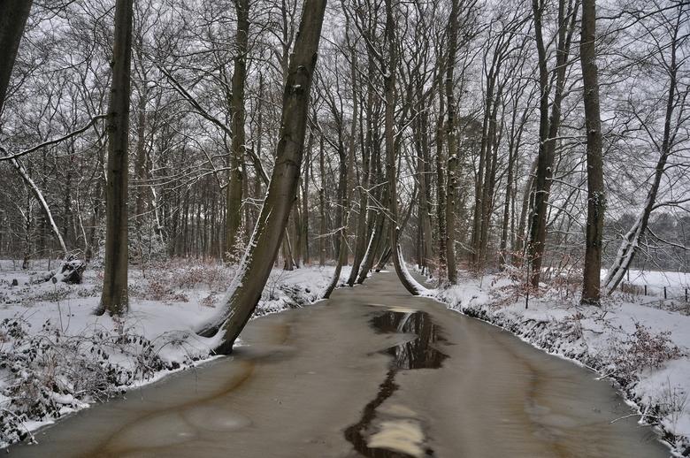 De Twickelse vaart. - Nu in de winter.<br /> Staat ook op 85 foto 4  in het voorjaar.<br /> <br /> <br /> Bedankt voor alle spontane reacties.<br