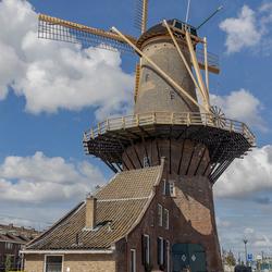 Molen de Roos in Delft