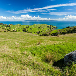 Schiereiland Coromandel in Nieuw Zeeland