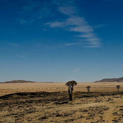 Namibian Desert kleur