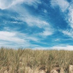 Katwijkse duinen