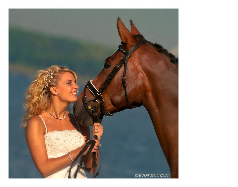 The bride... - Dit is een foto die ik toevallig genomen heb toen ik in september weer eens op zwanenjacht was...deze mooie zwaan was een leuk extra&#0