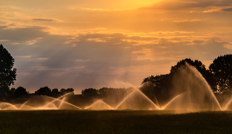 De warme en droge zomer van 2018 - Ik weet niet of het toegestaan is om de gewassen te besproeien, gezien de dreiging van het tekort aan water, maar i