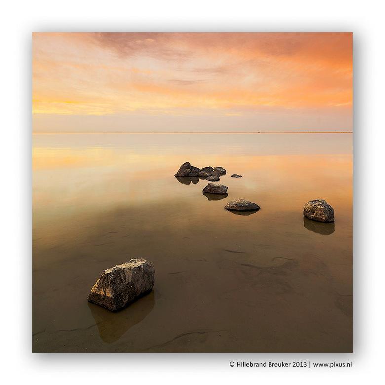 Goldy rocks - Prachtige momenten aan het Friese IJsselmeer.