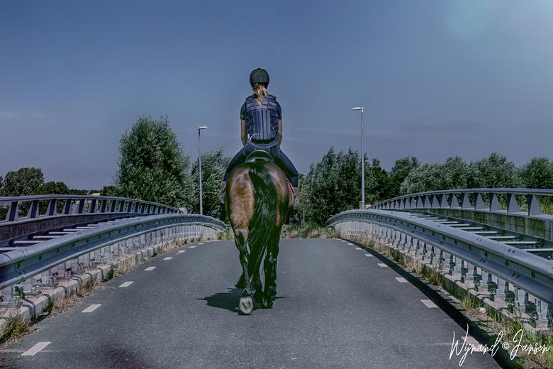 The horse girl - Een paard hebben de droom van bijna elk jong meisje.
