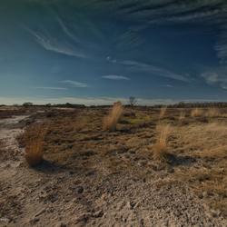 Zandverstuiving Larense Heide
