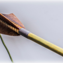 Arrow on the bow
