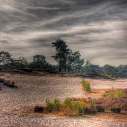 Soester duinen HDR 3