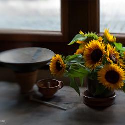 Zonnebloemen bij het raam