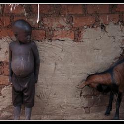 De jongen en de geit