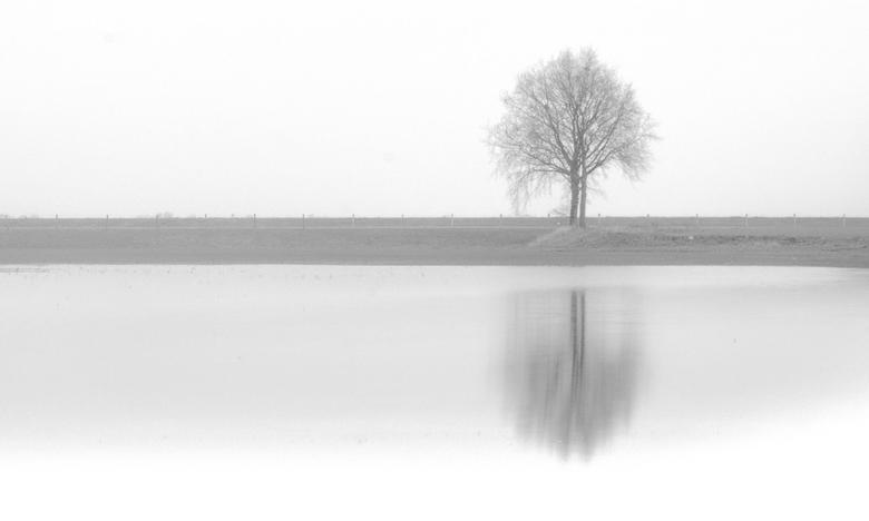 Solitude in White - Nieuwe versie van Solitude in Grey. Ik was niet tevreden met het grauwe karakter en de uitsnede, daarnaast wat stukjes riet weggew