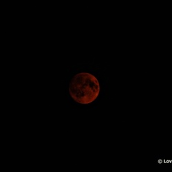 Goud Rode maan op 15-09-2106