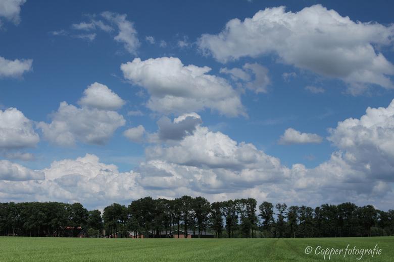 Twents landschap - Laag camera standpunt (lage horizon) gekozen om de wolkenhemel beter tot z'n recht te laten komen.