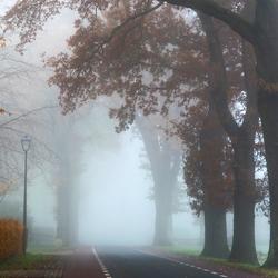 Muur van mist