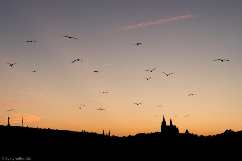 Zonsondergang in Praag