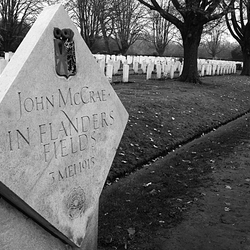 In Flanders Fields (8).jpg
