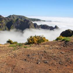 Madeira boven de wolken