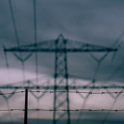 Birds' n wires