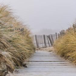 paadje door de duinen