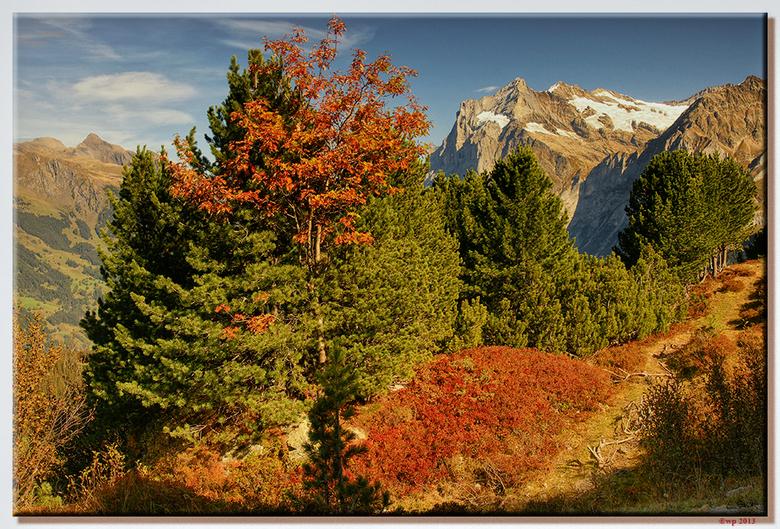 Herfstig berglandschap - Het begon al een beetje te kleuren.