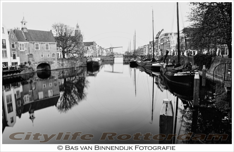 Citylife Rotterdam - Citylife Rotterdam