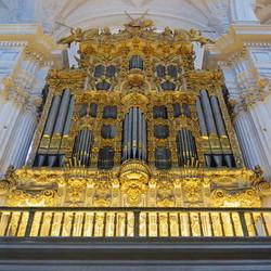 Gouden orgel