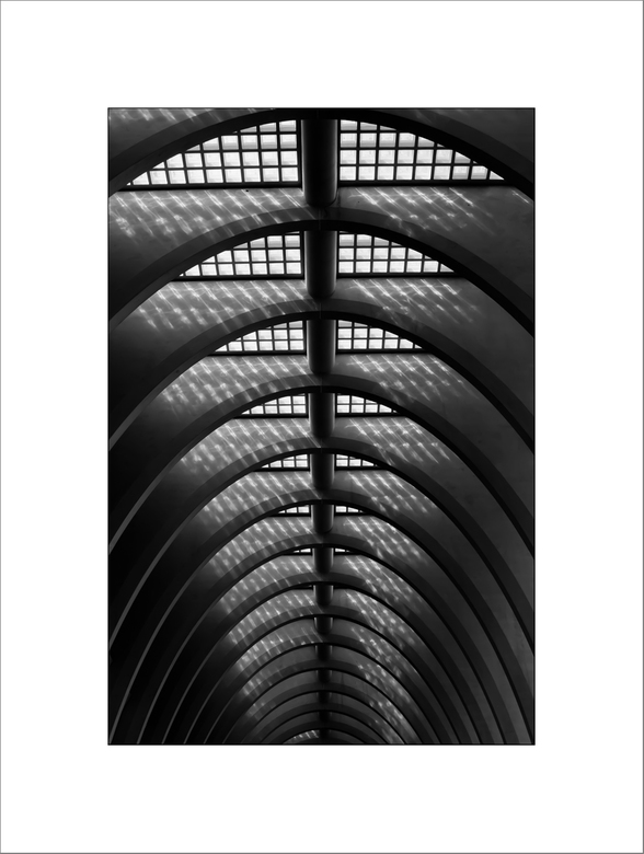 Liège-Guillemins (12) - Er is een grote tegenstelling tussen het grote, lichte station en de eronder gelegen stationshal, die laag en donker is. Hier
