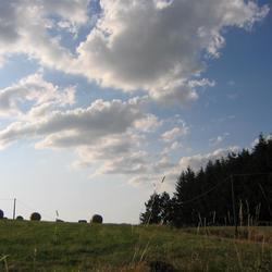 Hooirollen onder de wolken