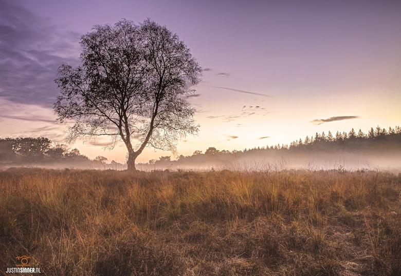 Zonsondergang op de Veluwe.