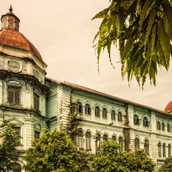 Yangon Colonials