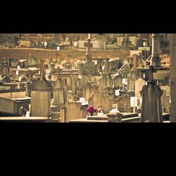 WO I Graveyard