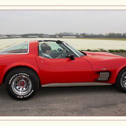 Corvette tussen de bollen.