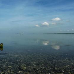 Vanmorgen aan het meer.....