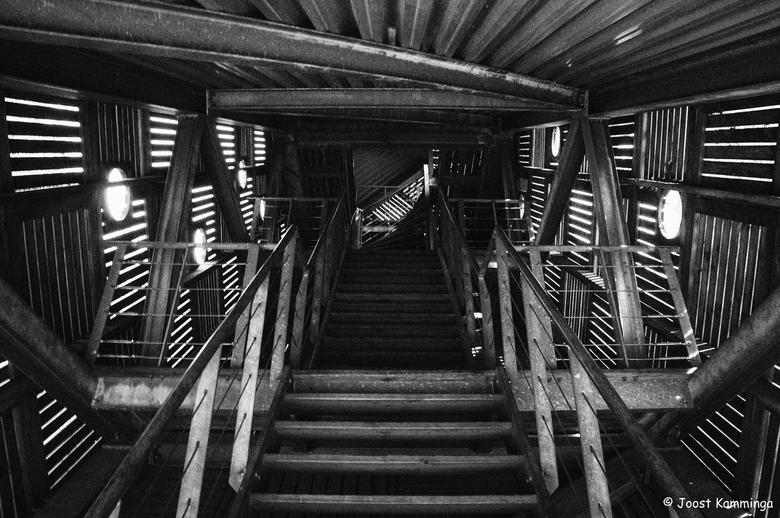 """Stairway of Seven - De trap van uitkijktoren """"De 7"""" bij het Fochterloërveen."""