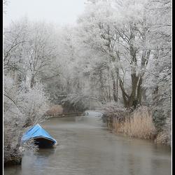 Winterse  Schoonheid.