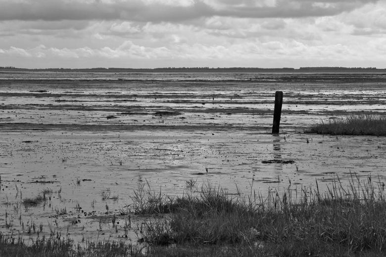 Wad een ruimte - De Waddenzee tussen Schiermonnikoog en Lauwersoog als het eb is. Bewerkt vond ik deze foto nog mooier dan de kleurenversie, de contra