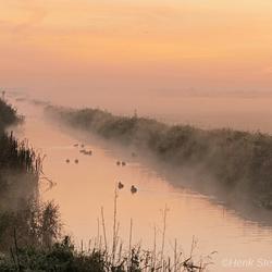 dampende polder
