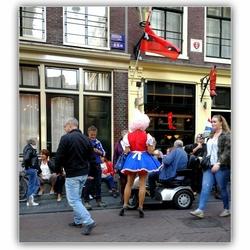 De Hollandse Nieuwe . .