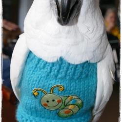 Mijn Witkuifkaketoe Maxi tijdens dierenbezoek verzorgingshuis, 17-1-2017.