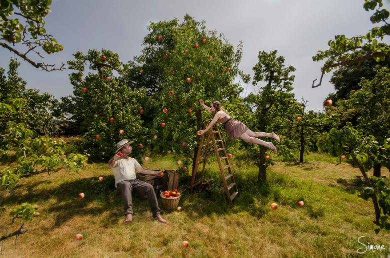 De appel plukkers - Fotomanipulatie van twee vliegende appel plukkers.