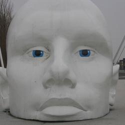 White nose.
