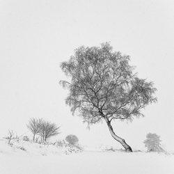 Whiteout op Elspeterheide