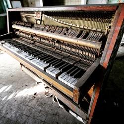 Lost piano.