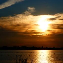 Gouden Zwanenmeer