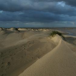 Horsduinen Texel