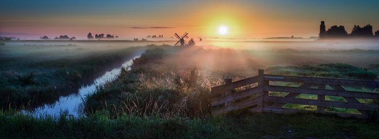 Hollandse Morgen